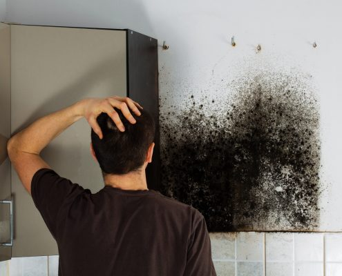 MOLD-KEEP IT OUT OF YOUR HOME
